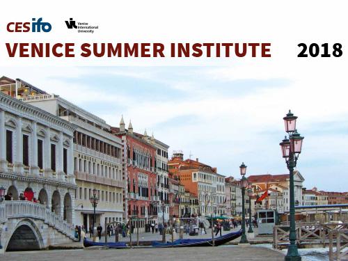 Venice Summer Institute